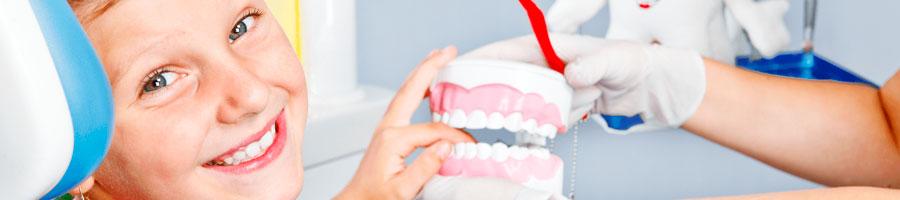 odontopediatría Forex